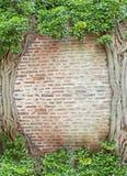自然的框架 库存图片