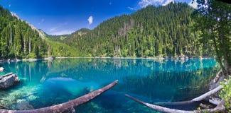 自然的横向 湖小Ritsa的全景视图 免版税库存图片