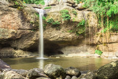 自然的泰国 库存图片