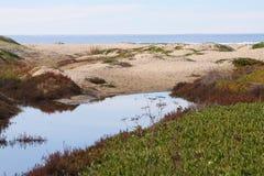 自然的海岸 免版税库存图片