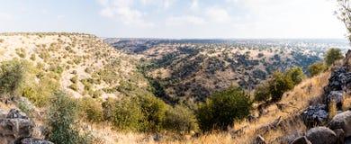 自然的看法在戈兰高地的在六角形水池附近在以色列 免版税库存照片
