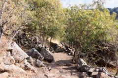 自然的看法在戈兰高地的在六角形水池附近在以色列 图库摄影