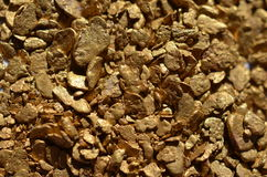 自然的金子 免版税库存照片