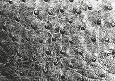 自然皮革困厄的覆盖物纹理  库存图片