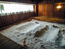 自然盐温泉 库存照片