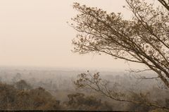 自然盖以烟雾 免版税库存图片