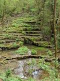 自然石化的春天 图库摄影