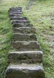 自然石台阶 免版税库存图片