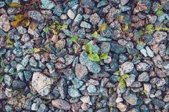 自然石墙 灰色岩石有绿草背景 概念许多生态的图象我的投资组合 土气样式自然墙纸 摘要 免版税库存照片