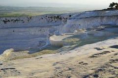 自然石灰华水池在棉花堡,土耳其 免版税库存照片