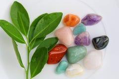 自然石头和叶子的混合在白色背景 库存图片