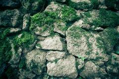 自然石头和青苔纹理  免版税库存照片