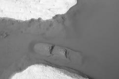 自然石头在水B&W中 免版税库存照片