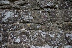 自然石头墙壁与地衣的 图库摄影
