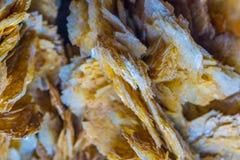 自然石水晶 库存图片