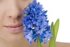 自然秀丽的会开蓝色钟形花的草 库存照片