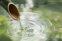 自然竹喷泉 库存照片