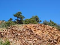 自然红色岩石砂岩形成在马礼逊科罗拉多 免版税库存照片