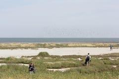 自然纪念碑游览到Wadden海岛Griend 免版税库存图片