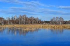 自然纪念碑-同一个名字的村庄的湖Uvildy和片段在晚秋天在晴朗的天气,乌拉尔南部,Chely 免版税库存图片