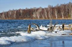 自然纪念碑-湖Uvildy在晴天,车里雅宾斯克地区的晚秋天 俄国 海岛的岸的森林 库存图片