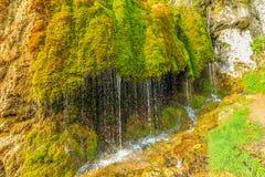 自然纪念碑Dreimà ¼ hlen瀑布用德语埃菲尔山 免版税库存照片