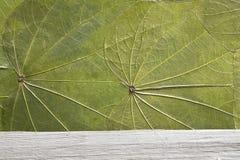 自然纹理 免版税库存照片