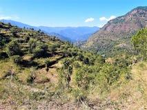 自然美丽的景色在印度 库存照片
