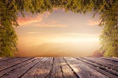 自然美好的风景  免版税库存图片