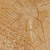 自然老木五谷日志正方形框架纹理特写镜头 免版税图库摄影