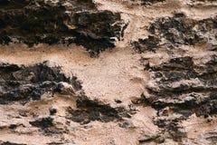 自然老石背景-火星表面 库存图片