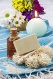 自然肥皂 图库摄影