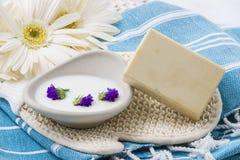 自然肥皂 库存照片