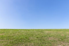 自然背景,与蓝天的绿草 免版税库存照片