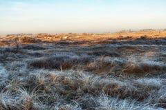 自然背景,荷兰沿海特点在冬天 库存图片