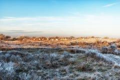 自然背景,荷兰沿海特点在冬天 免版税库存图片