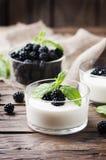 自然自创yougurt用莓果和薄菏 库存图片