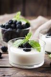 自然自创yougurt用莓果和薄菏 免版税库存图片