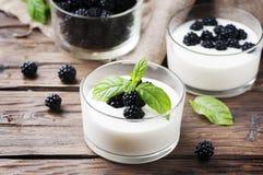 自然自创yougurt用莓果和薄菏 免版税库存照片