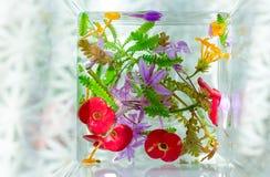 自然艺术花构成 免版税库存照片