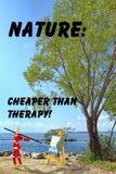 自然艺术行情 图库摄影
