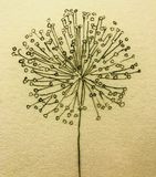 自然花卉成为原动力的装饰背景特写镜头概念艺术性的绘画 库存照片