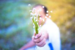 自然草开花,与明亮的天空的狂放的黄色花 免版税图库摄影