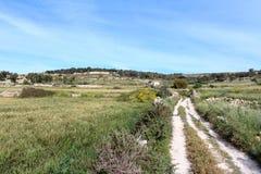 自然草甸和自然路 图库摄影