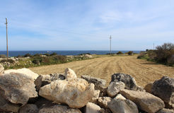 自然草甸和路,自然场面 免版税库存照片