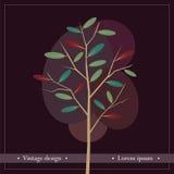自然葡萄酒设计  库存照片