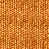 自然蜂蜜梳子六角纹理,宏观照片 免版税图库摄影