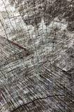自然被风化的灰色树桩裁减纹理,大详细的老年迈的灰色木材背景垂直的宏观特写镜头,深黑色 免版税库存照片
