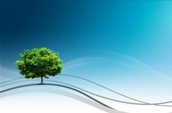 自然设计 免版税库存图片
