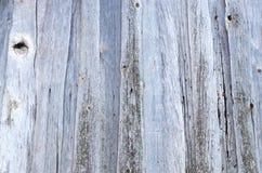 自然质地木头抽象背景  库存图片